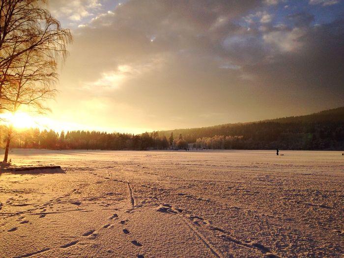Enjoying The Sun and the Snow at Sognsvann in Oslo Norway . Eye4photography  EyeEm Best Shots EyeEm Nature Lover Winter Wonderland