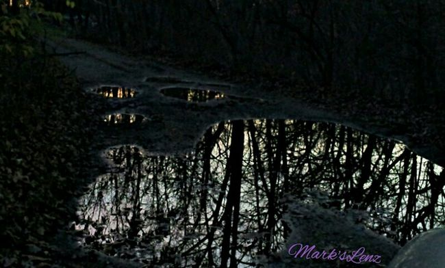 Evening Reflections Water Nature Trees Taking Photos Fotodroiding Andrography Photography Outdoors Droidography Fotodroids Android Lightbox Andrographer Droidographer Reflections
