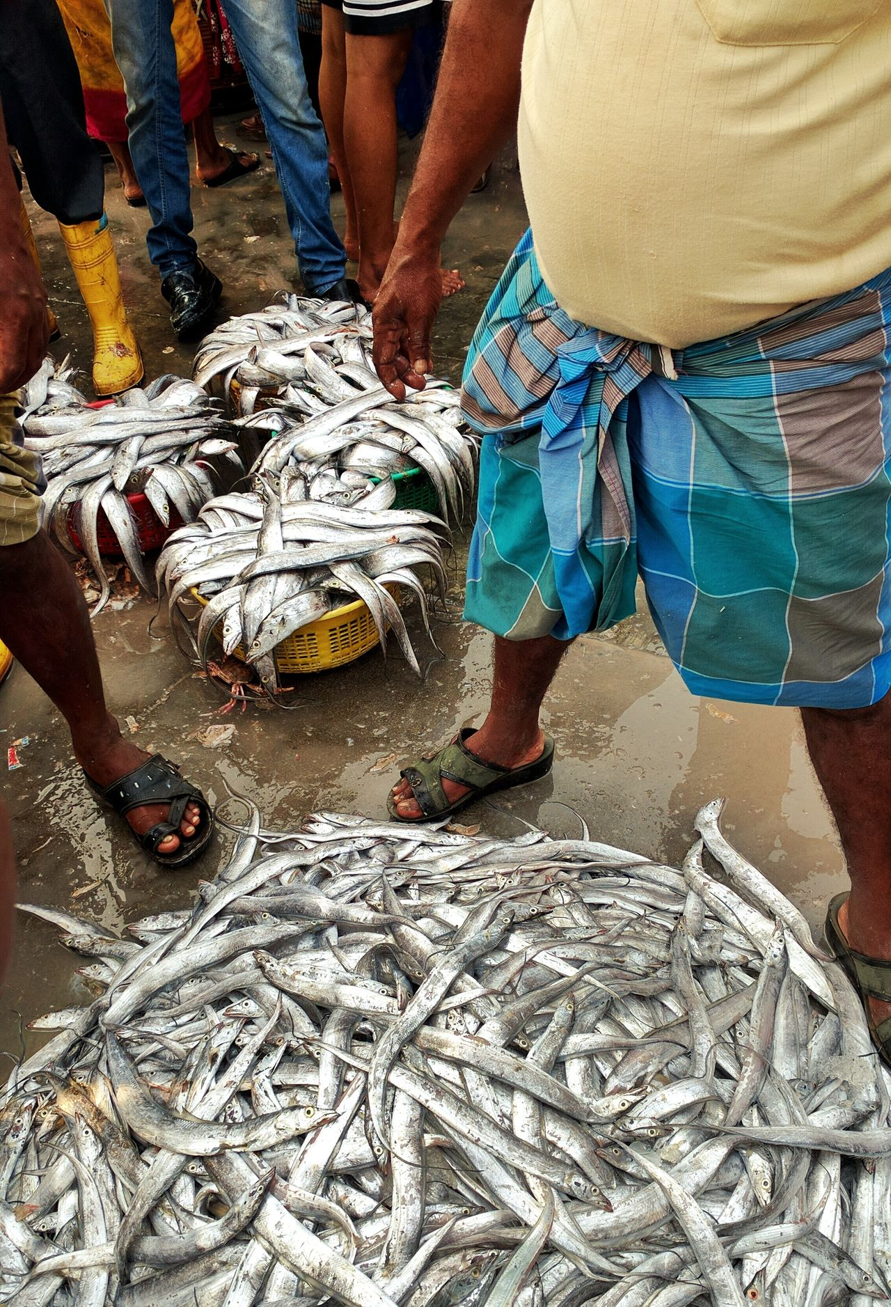 Fish For Sale Fish Market Bhau Cha Dhakka Princess Docks Mumbai Fish