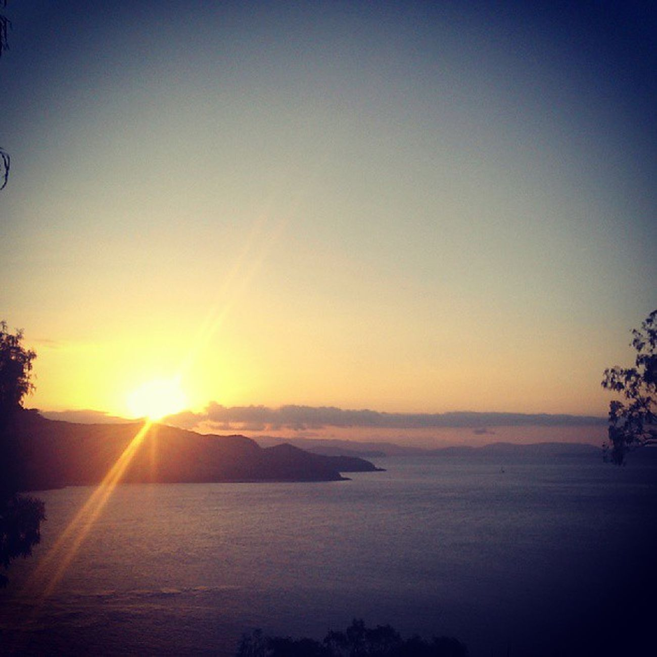 Last sunset with a g'n't Ilovethisplace Hamiltonisland Dontwannagohome