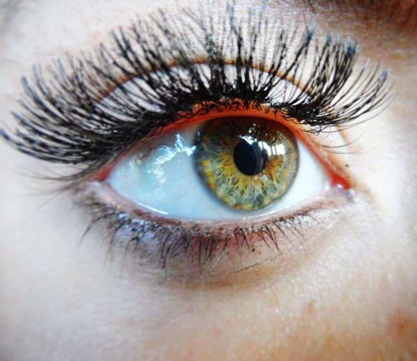 Amazon green Eyelash Human Eye Eyeball Iris - Eye Make-up