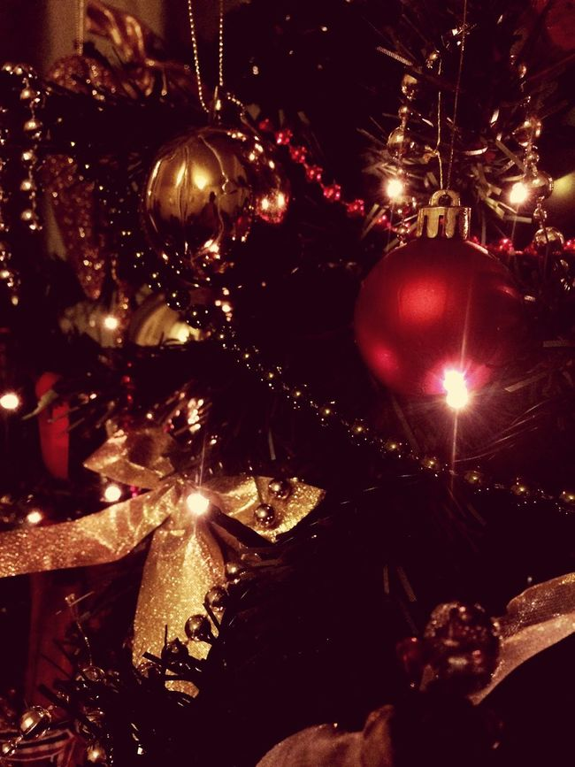 Day 10 - Christmas tree Close-up Christmas Tree Christmas Christmas Lights Christmas Decorations Check This Out Enjoying Life Happy Holidays! Photography Picoftheday 2015  EyeEm Christmas2015 Baubles Taking Pictures December Showcase: December First Eyeem Photo Xmas Festive Season EyeEm Best Shots CountdownToChristmas Santaclausiscomingtotown Santa Relaxing