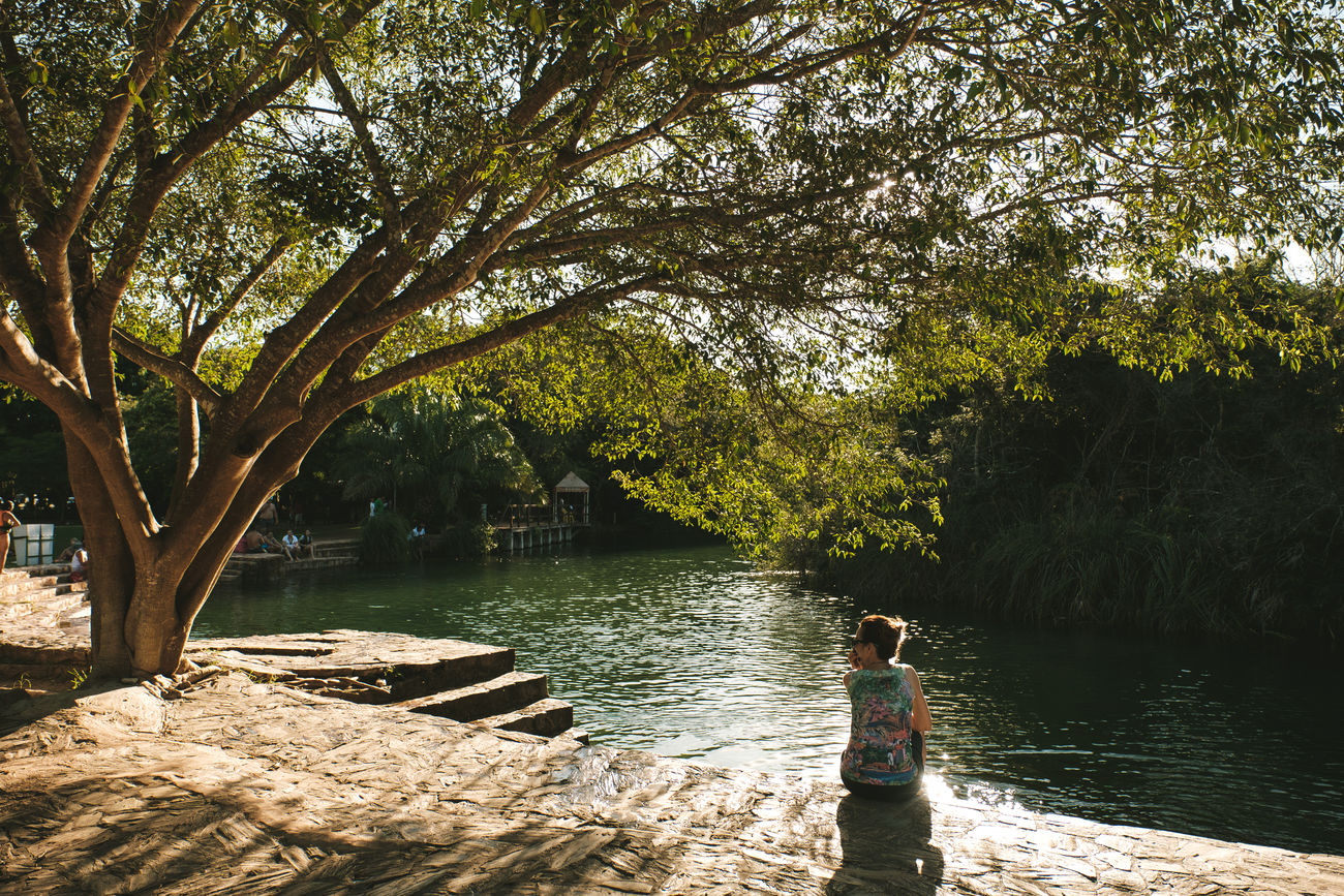 Balneario Municipal Beauty In Nature Bonito Brazil Clear Water Crystal Clear Waters Fishes Formoso River Landscape Leisure Activity Lifestyles Mato Grosso Do Sul Nature Nature Outdoors Real People Rear View River Scenics Sitting Transparent Tree Vacations Water Women
