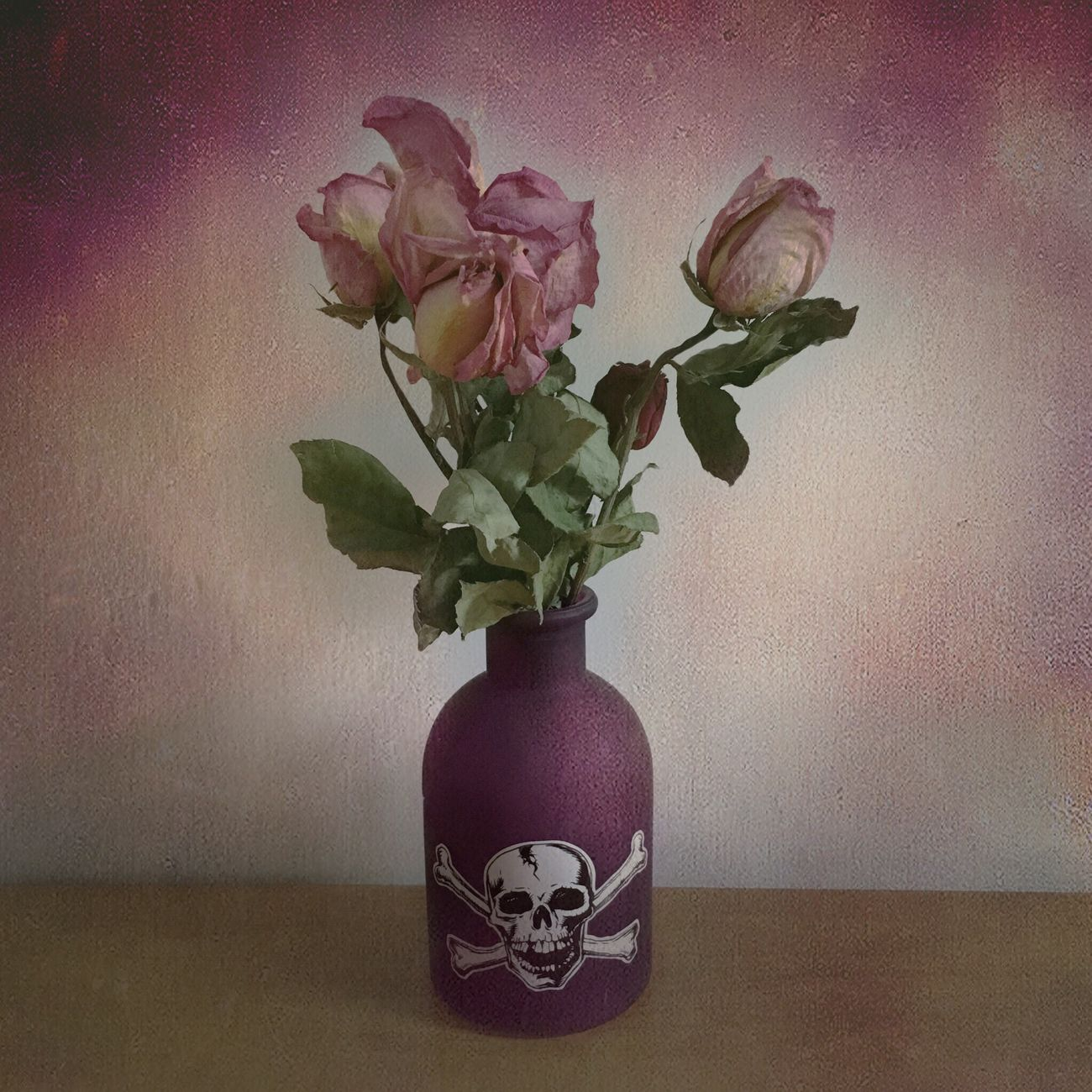 Flowers DeadRoses Purple Pink Deadflowers SkullAndCrossBones ☠🌹☠