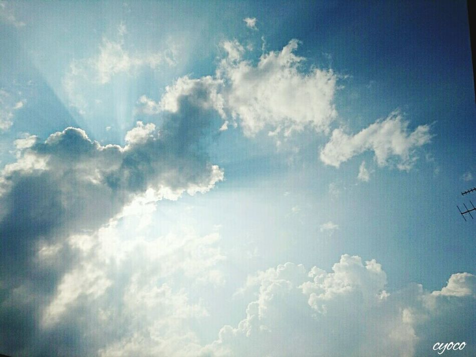 空 ソラ Nature_collection Mother Nature Nature Photography Eyeem Photography Japan Photography EyeEm Gallery EyeEm Nature Lover Clouds Sky Summer Sky_collection Sky And Clouds Sky Of Japan Sky And Cloud Collection 雲 くも Sun