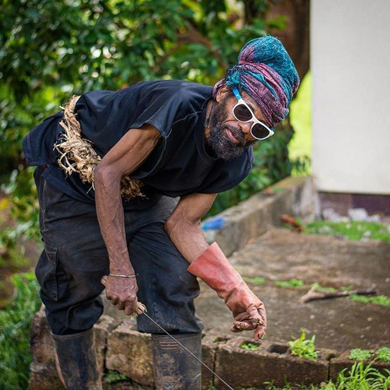 Grenada Rural_love IshootGND Andyjohnsonphotography Amazingphotohunter Ig_captures_people Ig_caribbean People Natgeo Ig_grenada Uncoveryours Westindies_landscape Udog_peopleandplaces Andyjohnsonphotography