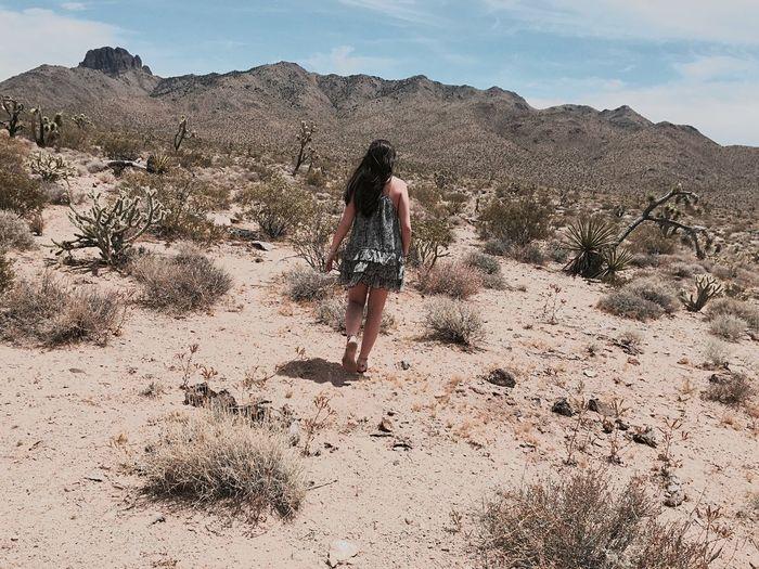 Middle Of Nowhere Desert 🌾🌵
