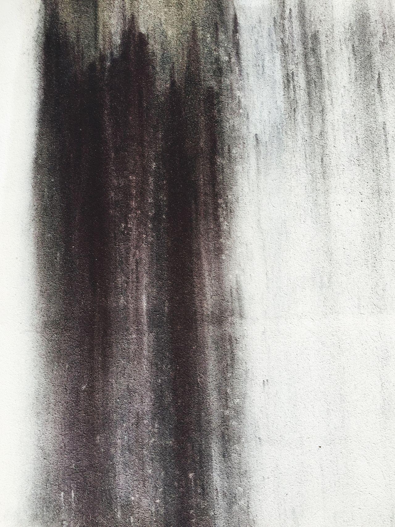 Muffa Backgrounds Wall Black White