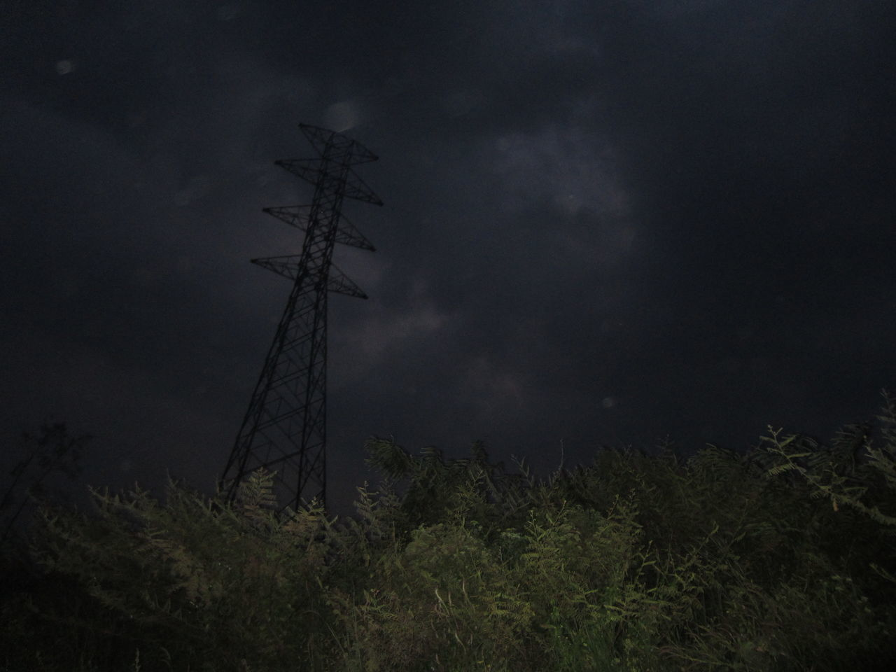 Tree Nature Night Low Angle View Sky Beauty In Nature Landscape Outdoors No People Darkness And Light Tower Electric Tower