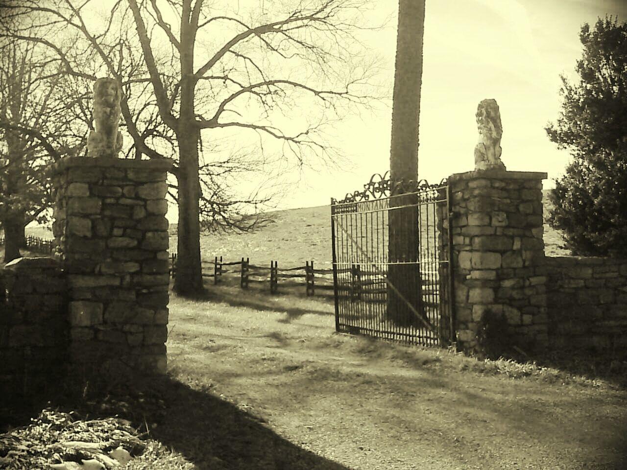 Virginia Estate Contry Iron And Stone Stone Columns Wrought Iron Gate Autumn Peaceful Trees