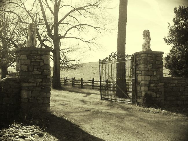 Virginia Estate Contry Iron And Stone Stone Columns Wrought Iron Gate Autumn Peaceful Trees