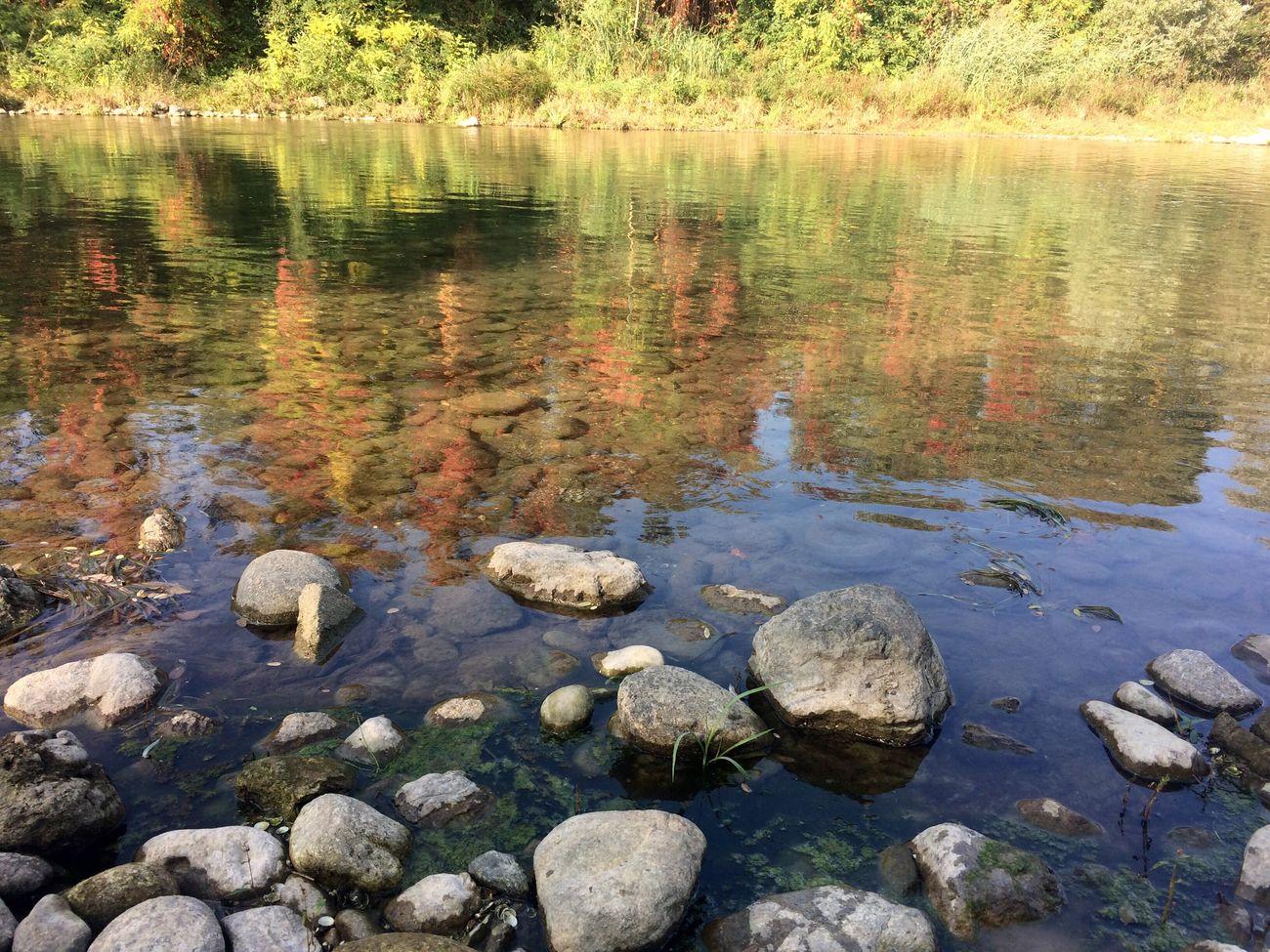 Ie sponde del fiume Oglio con colori autunnali