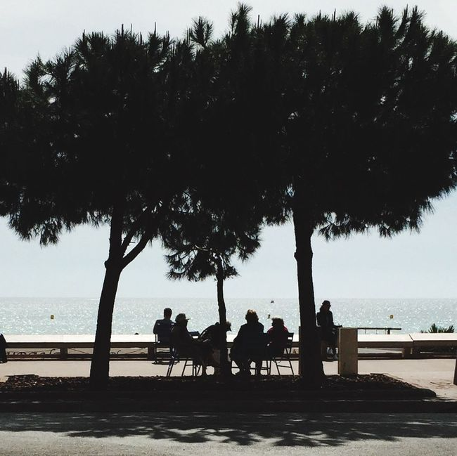 Ocean The Minimals (less Edit Juxt Photography) Treescollection People Watching Silhouettes Hanging Out Urbanphotography Streetphotography Someone