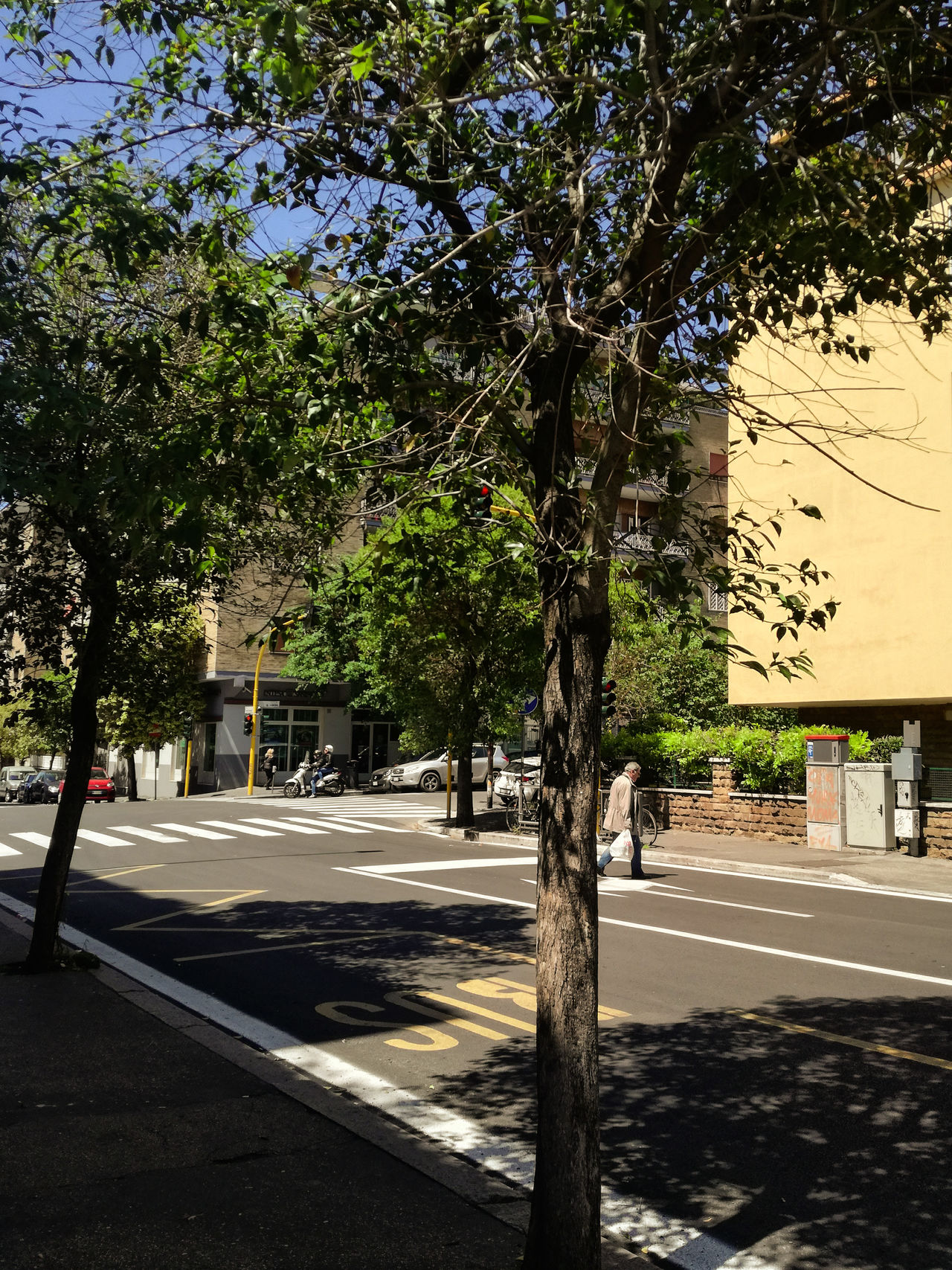 Architecture Building Exterior Built Structure Car City Day Growth Monteverde Vecchio Nature No People Outdoors Road Shadows & Lights Sky Street Transportation Tree