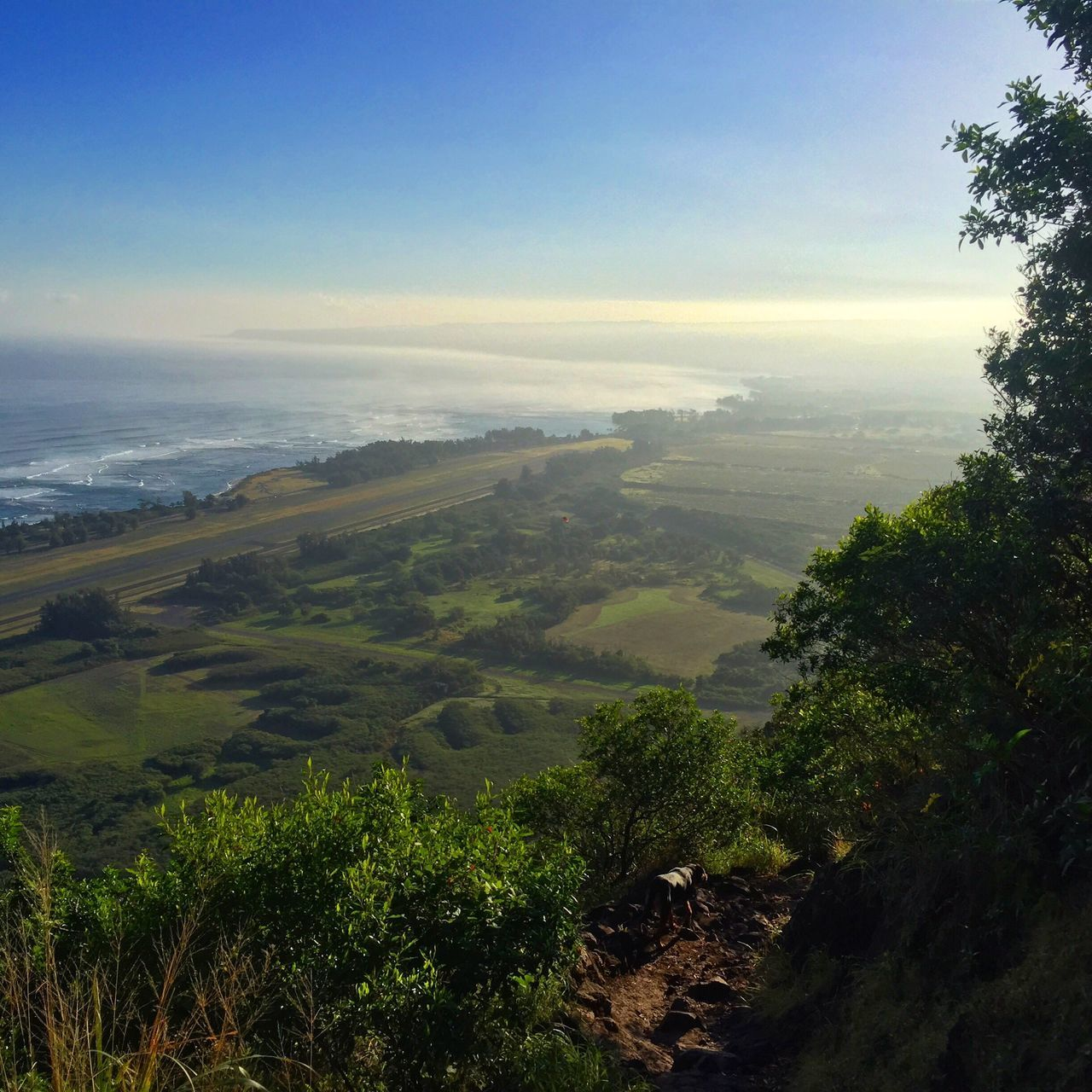 Luckywelivehi Hawaiihikes Beautyallaround Naturenailedit Sunrise Hawaii Chasing Dreams CaptureTheMoment Showcase: March Showcase: March 2016 Northshore808 Northshoreoahu Livingthedream Livealoha Thisishome BeGrateful Noworries