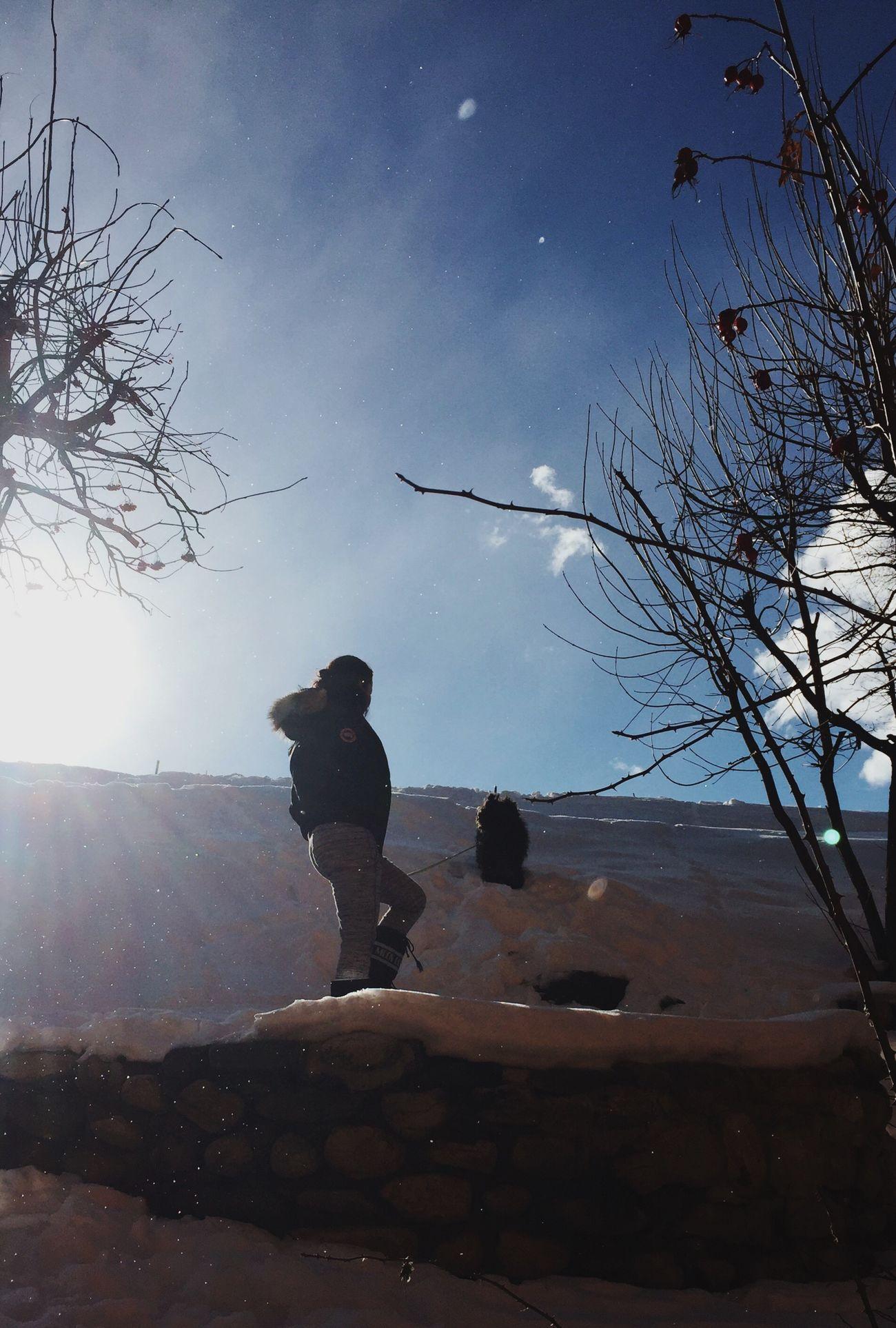 Let it snow ❄️ Babydog Dog RASTA Love Me Japanese  French Sky Snow Nature Courchevel