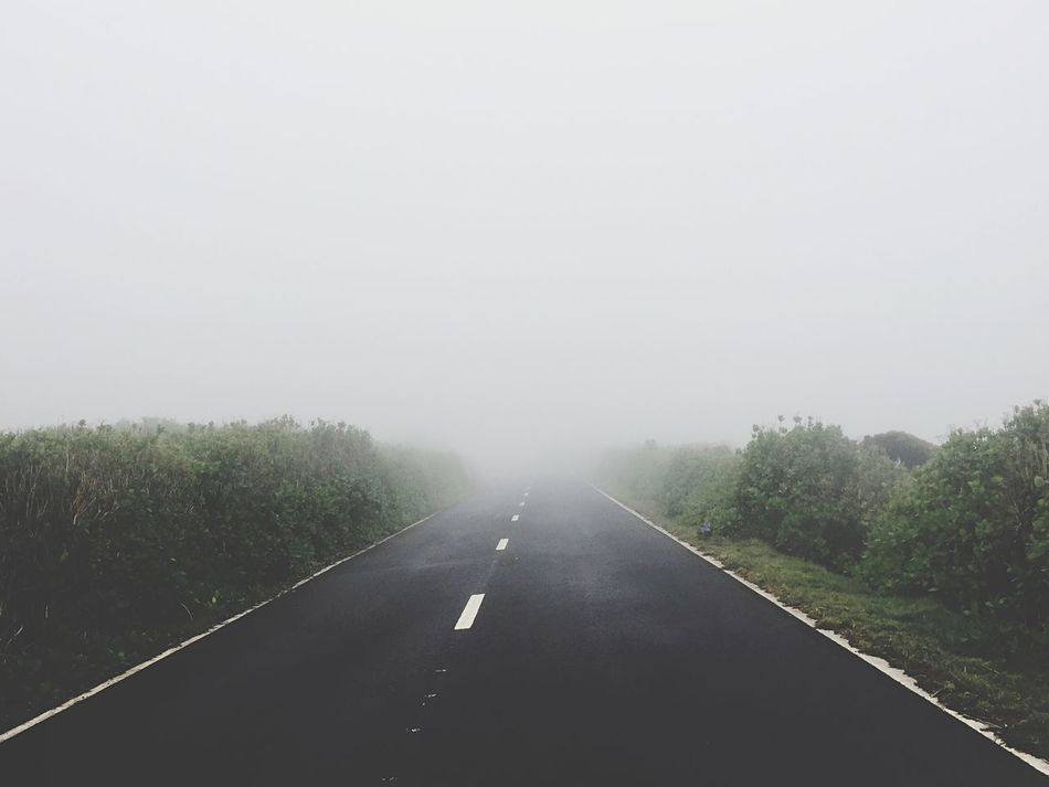 The Way Forward Transportation Road Diminishing Perspective Copy Space Clear Sky No People Day Nature Tree Landscape Outdoors Scenics Tranquility Tranquil Scene Sky Beauty In Nature Unknown Road Fog Azores IPhone Photography