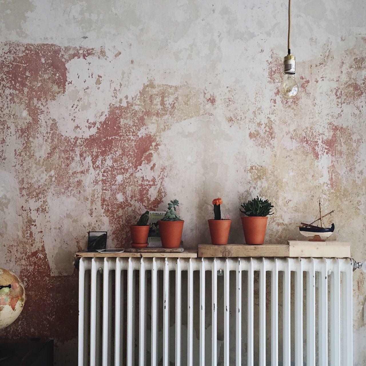 Beautiful stock photos of kaffee, Berlin, Coffee Shop, Day, Flower Pot