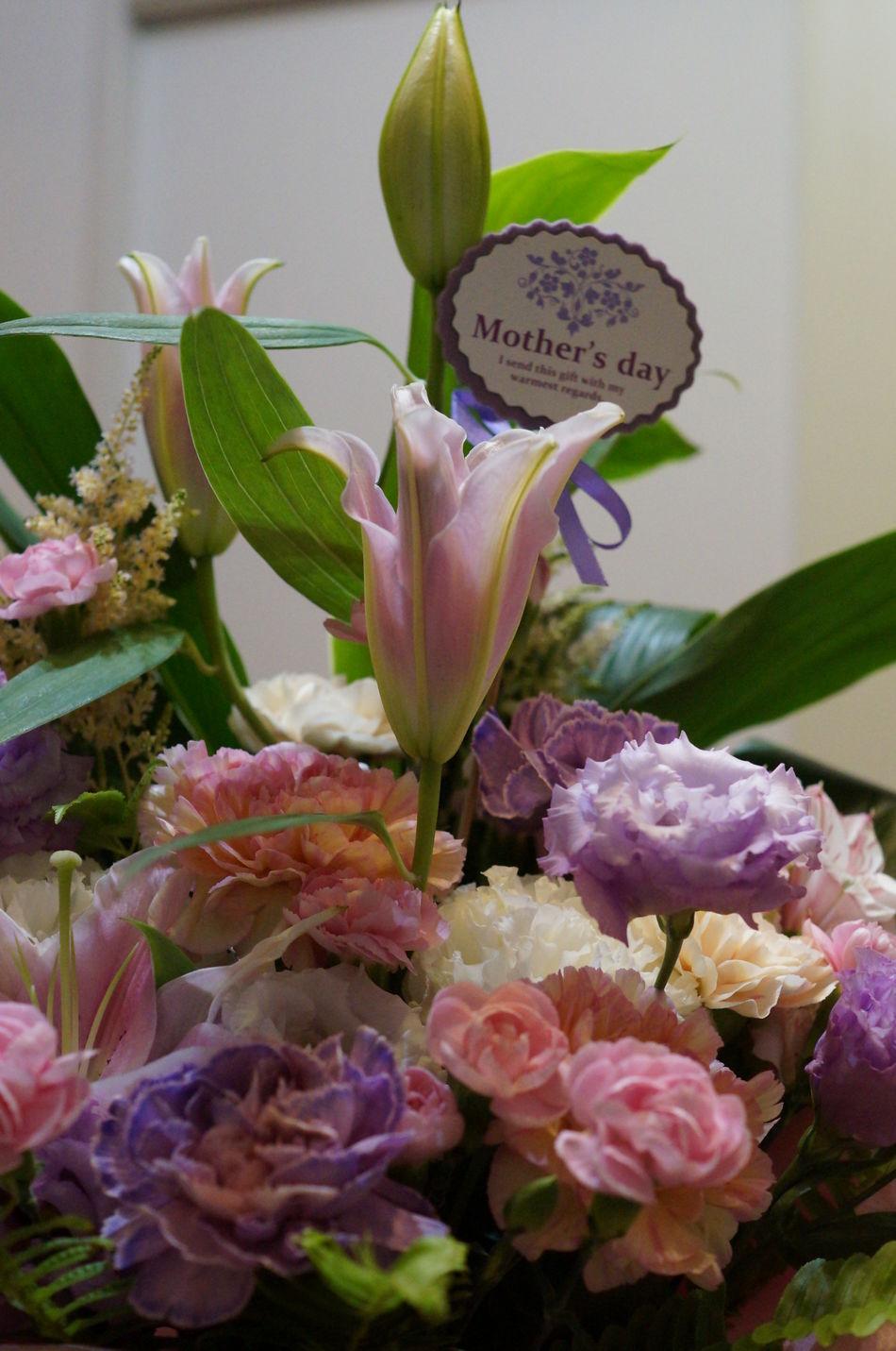 母の日に送った、花束。日光の下で撮影したかったな~。 Flower Arrangement Flowers Mothersday Present プレゼント 母の日 花 花束