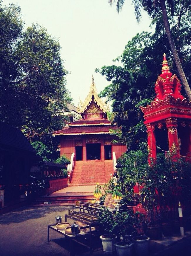 Buddhism Temple True Little Monk สามเณรปลูกปัญญาธรรม ปี ๓