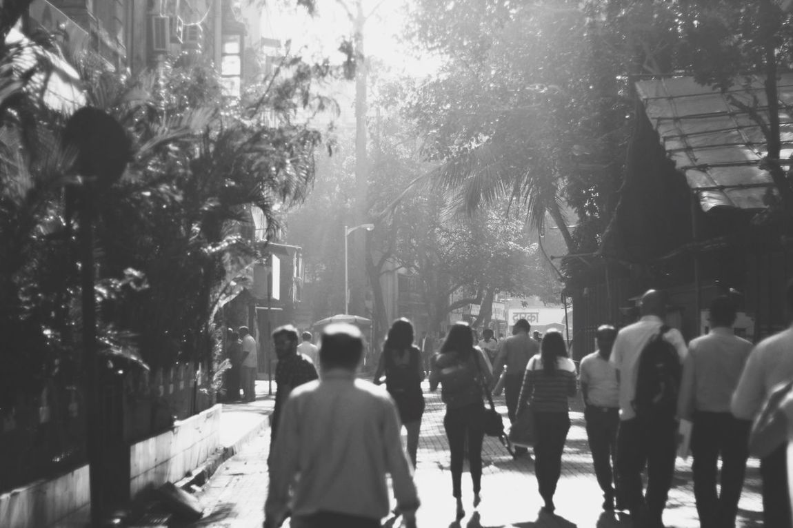 Tree Large Group Of People Walking Street Road Person Group Of People Sunbeam Day Bombay Fort Bse India Mumbai Canon 60d Vscocam VSCO Friends City Life Outdoors Lens Flare Backlit