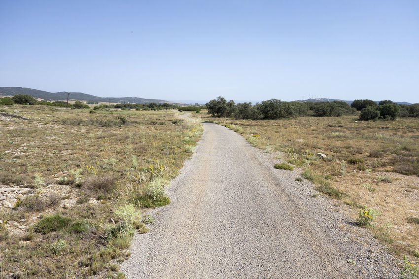 Barracas Castellón Clear Sky Day Diminishing Perspective Field Grass Landscape Nature No People Outdoors Plant Road Rural Scene Scenics Sky The Way Forward Tranquil Scene Tranquility Tree
