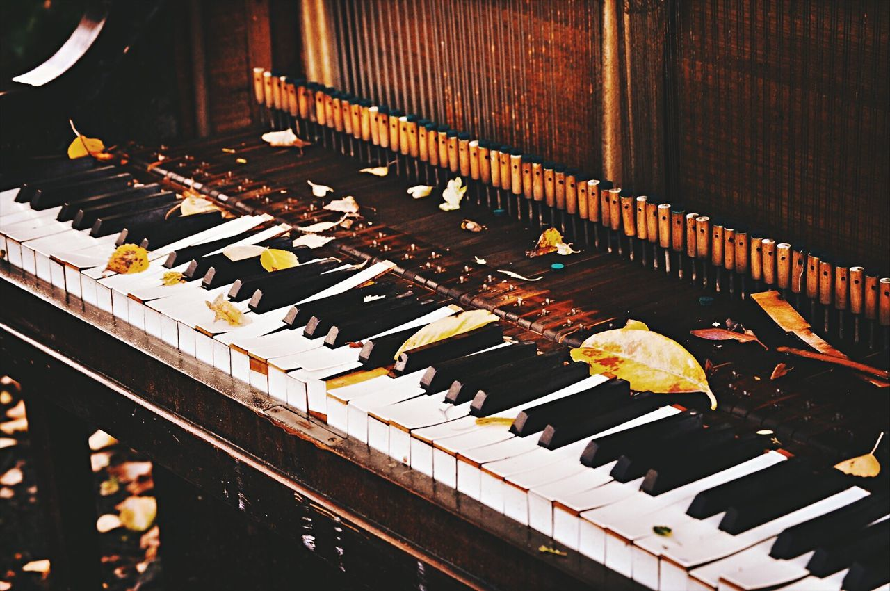 Piano Moments Music Arts Culture And Entertainment EyeEm Best Shots