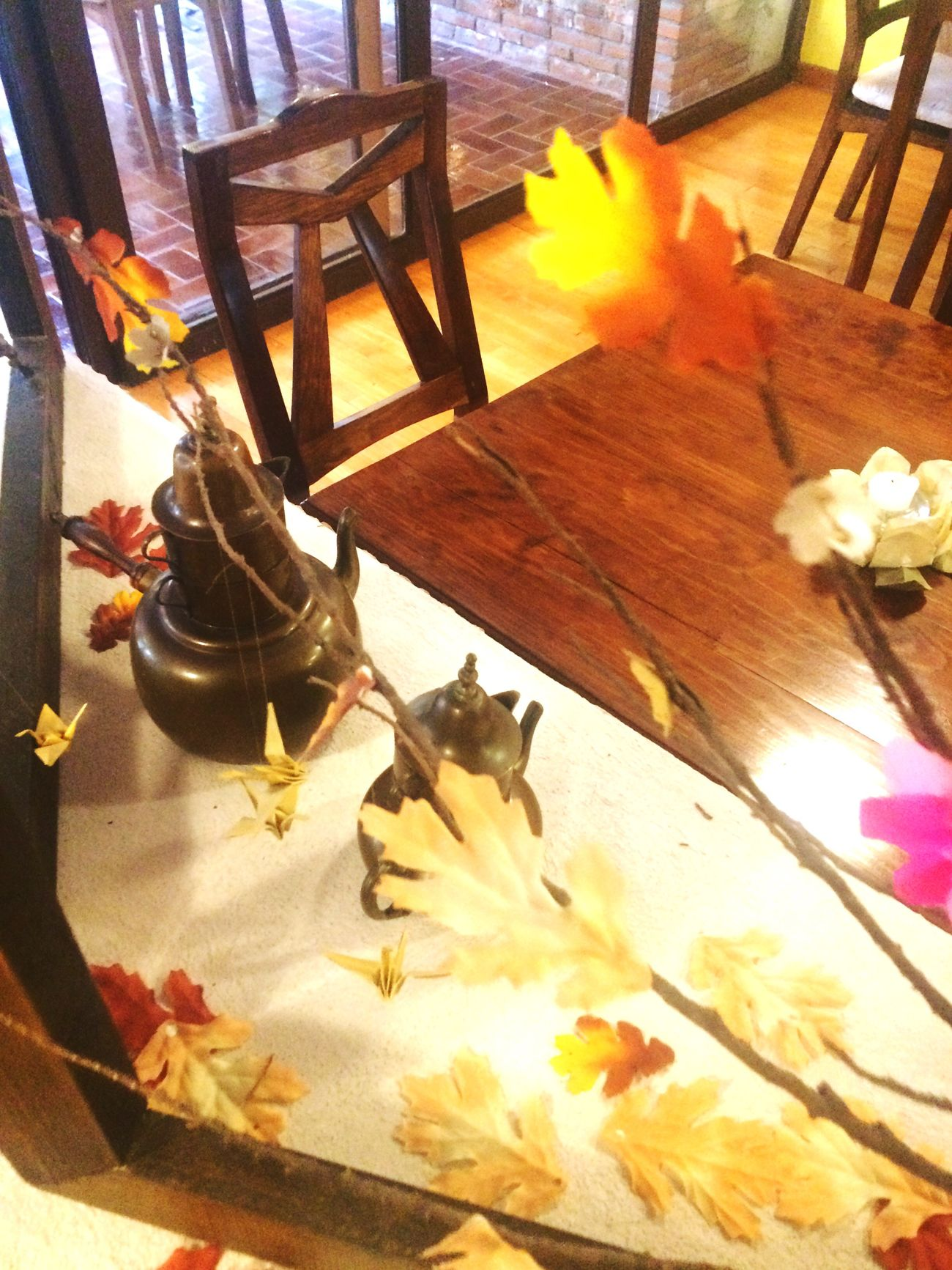 High Angle View Indoors  Sunlight No People Flower Table Close-up Day Animal Themes Nature