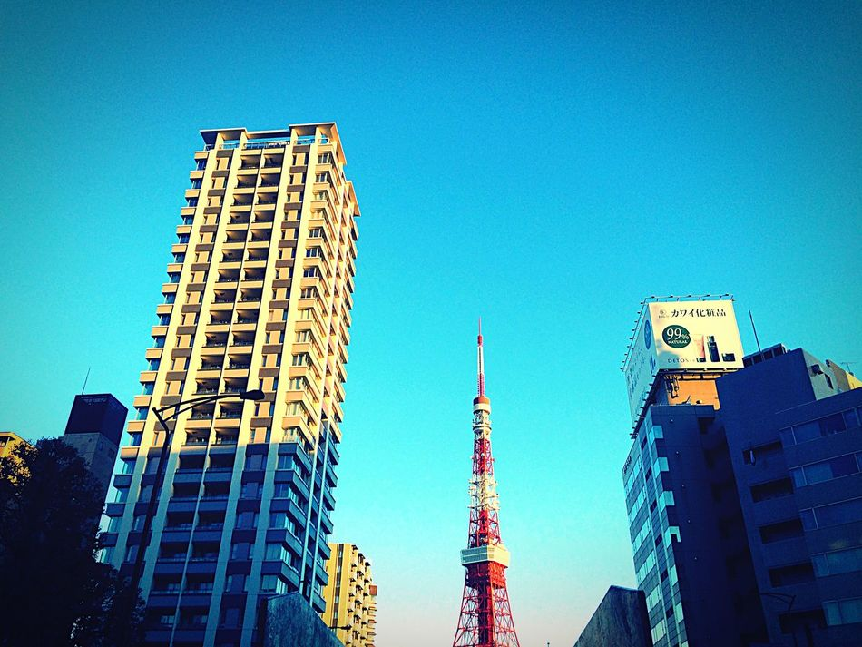 Hello Tokyo♪ Tokyo Tower Morning Blue Sky City