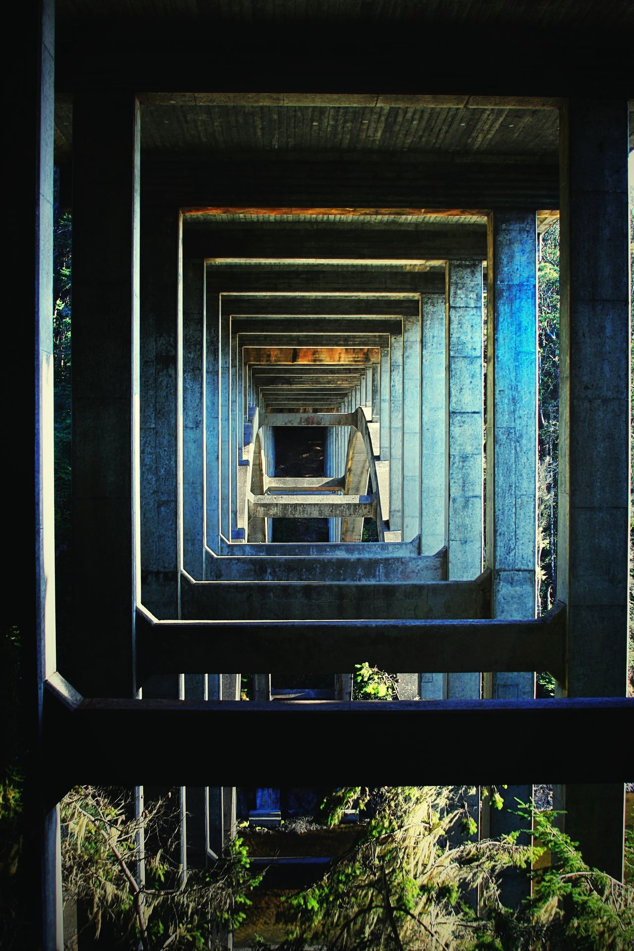 The City Light Built Structure Architecture No People Day Random Acts Of Photography Northern California Silence In The Moments Where I Live Coastal Area Beauty In Nature Redwoods My Backyard Bridge Over Water Bridge - Man Made Structure Bridge Photography Minimalist Architecture