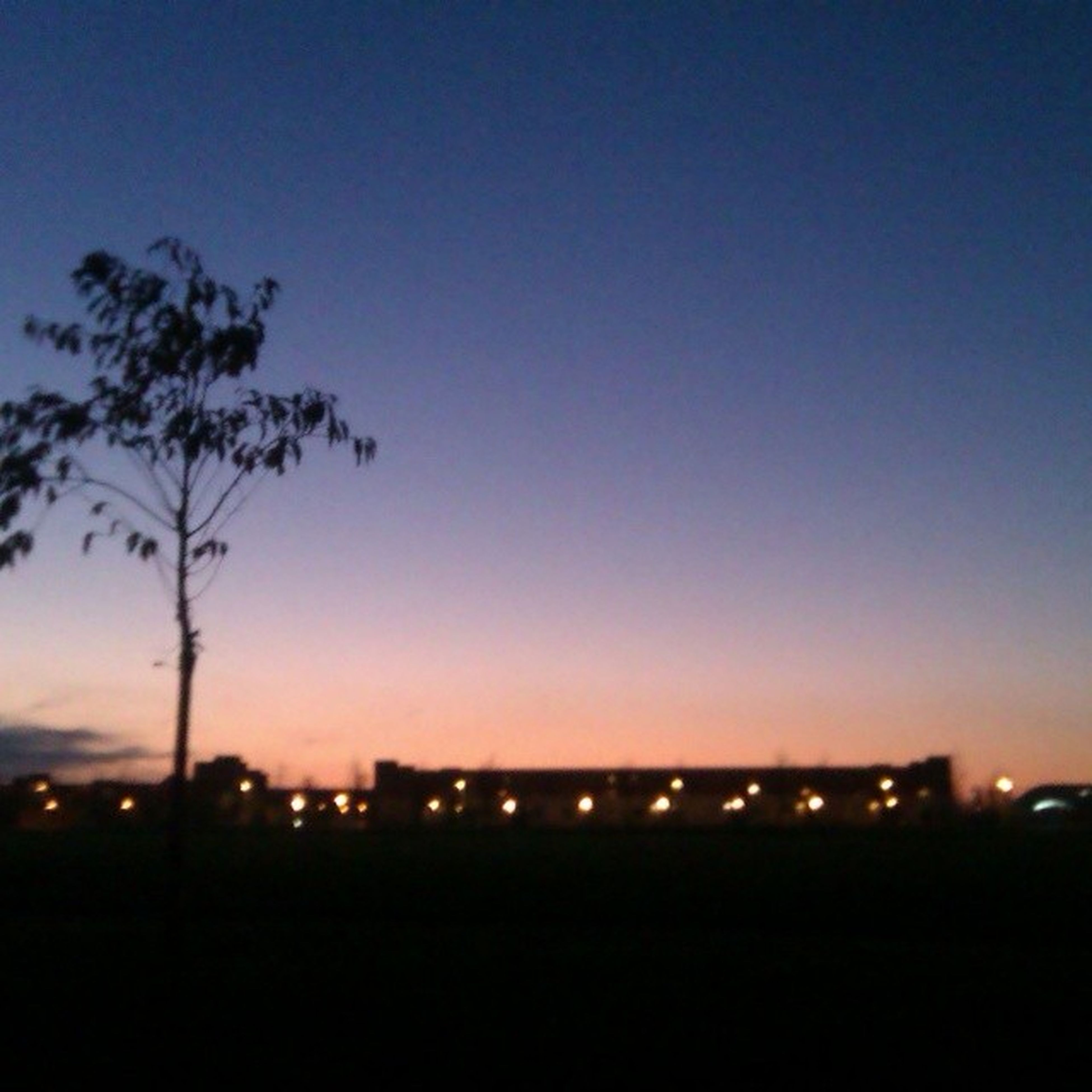 illuminated, silhouette, copy space, night, clear sky, sunset, dusk, dark, sky, tree, blue, outdoors, moon, built structure, building exterior, city, scenics, nature, no people, tranquility