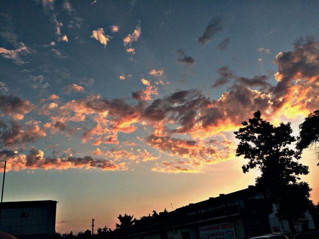 Delightful Sky Adore 🙈