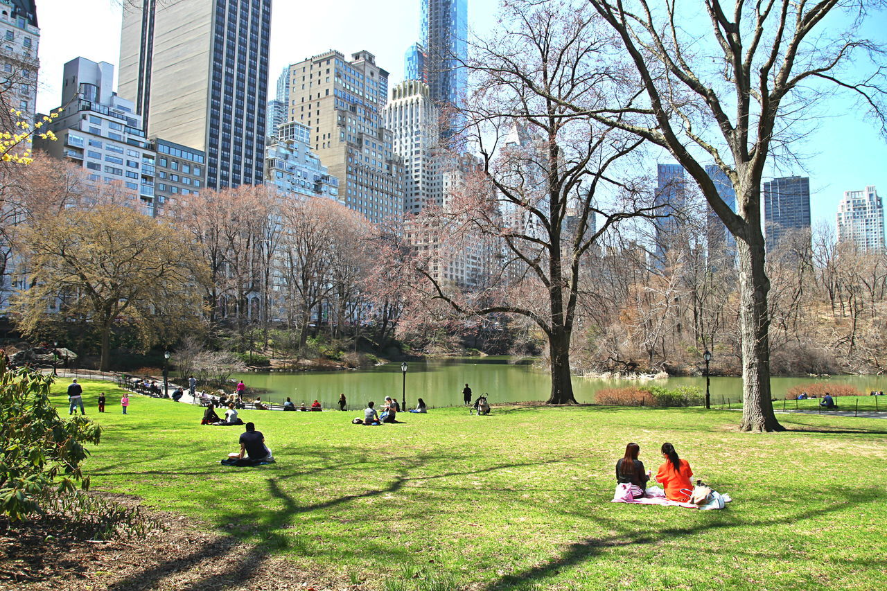 Spring Days in Central Park Adult Adults Only Architecture Building Exterior Built Structure Central Park City Day Grass Green Color Growth Large Group Of People Leisure Activity Manhattan Nature NYC Outdoors Parks People Real People Sky Skyscraper Spring Day Tree Women
