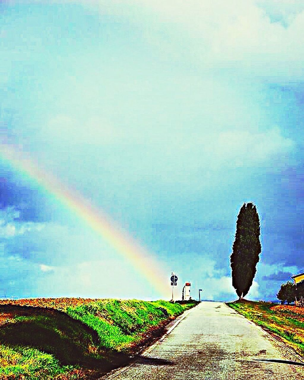 rainbow, day, scenics, tranquil scene, beauty in nature, nature, outdoors, double rainbow, tree, sky, tranquility, landscape, road, grass, spraying, water, one person, people
