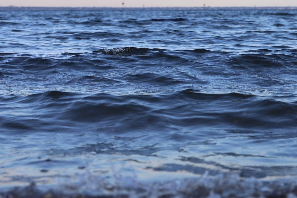 The wavelets of the bay. Sea Water Nature Full Frame Rippled Backgrounds Wave No People Beauty In Nature Outdoors Close-up Day Calm Calm Water Muttlypictures Low Tide Tranquility Small Waves Melbourne Horizon Over Water Scenics