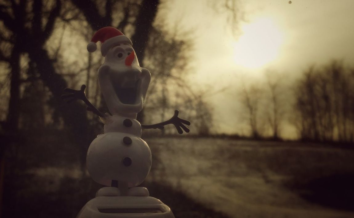 Olaf and I Love Cloudy, Hazy Days and Bare Trees....Beautiful Combo... Beauty In Nature Outdoors Winter Nature Tree Bareandbeautiful Silhouette Sunlight Beautiful Nature Photography EyeEm Nature Lover LovetheSimpleThings From My Point Of View Funwitholaf