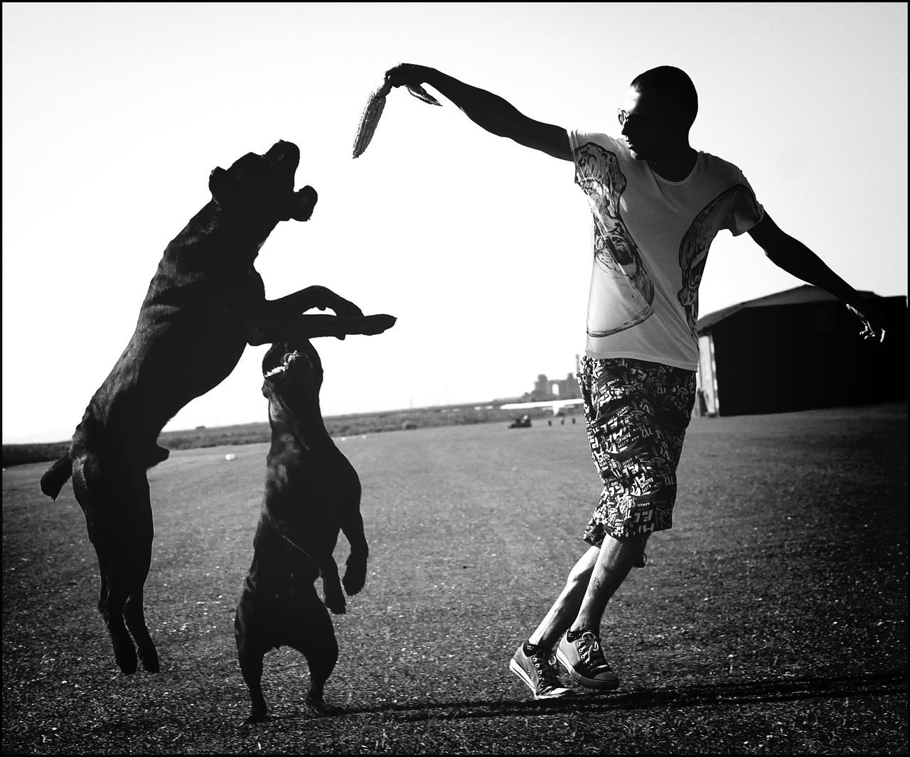 Young Man Playing With Cane Corso At Beach Against Clear Sky