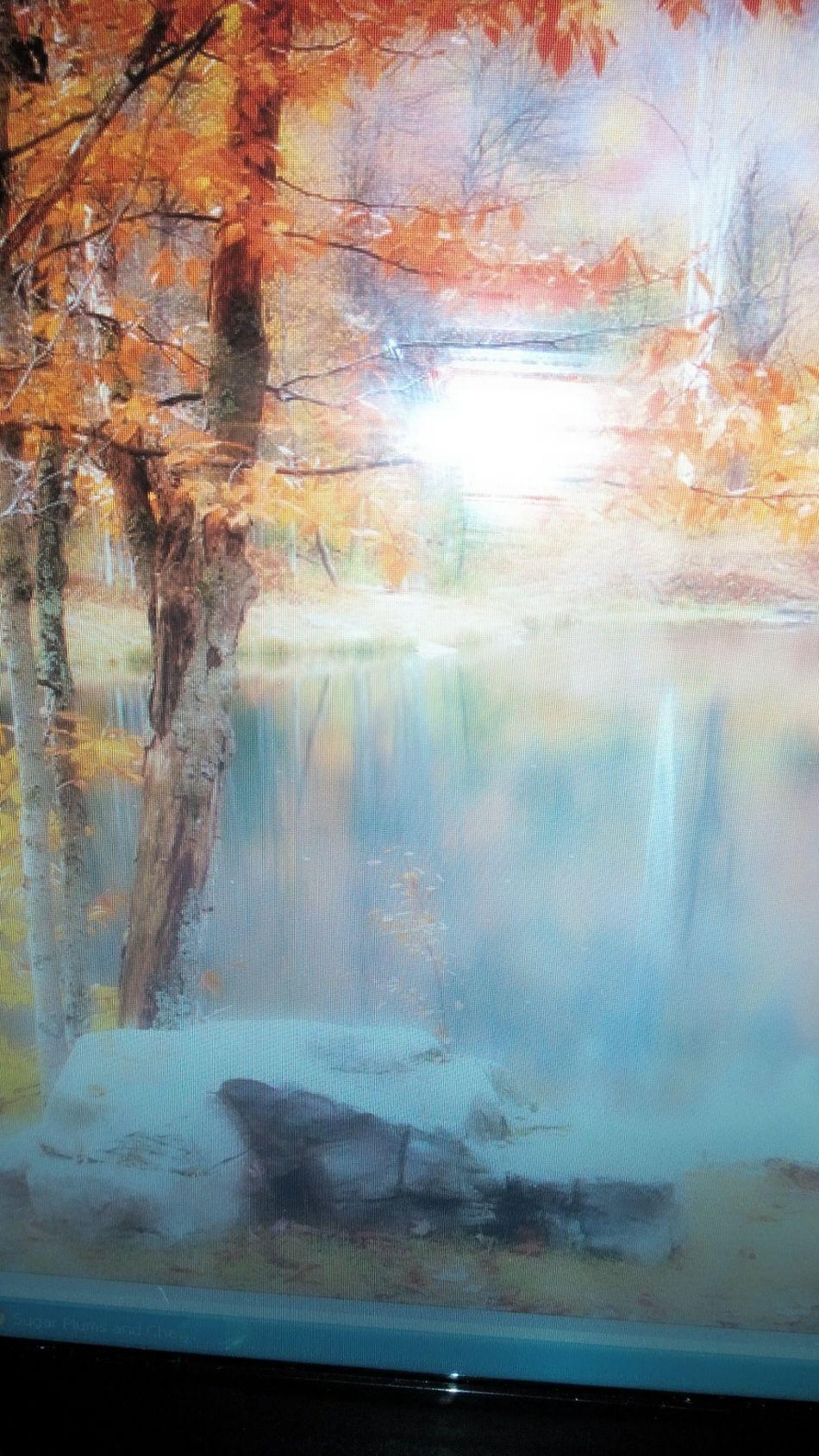 Goodbye Summer...hello Autumn:)