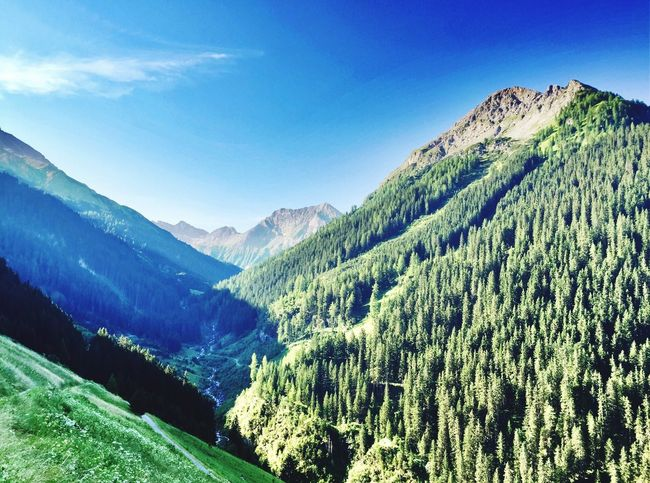 Sun Rising Sun Rise Mountain Mountain View Wooded Landscape Beauty In Nature Alps Alpen Austria