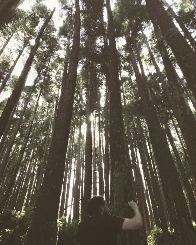 Taking Photos EyeEm Best Shots AMPt_community Great Atmosphere Nature_collection