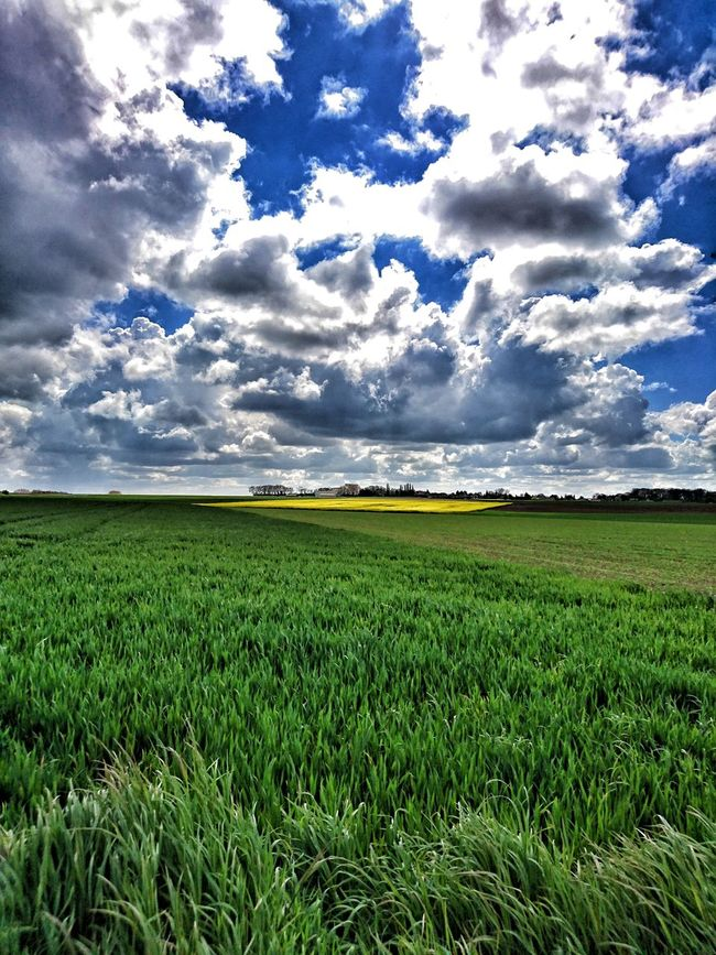 Champs. Country Life Clouds And Sky EyeEm Best Shots Sky And Clouds Landscape Nature Nature_collection Nature Photography Eye4photography  Countryside Eyeem France Clouds Sky Photography Is My Escape From Reality!