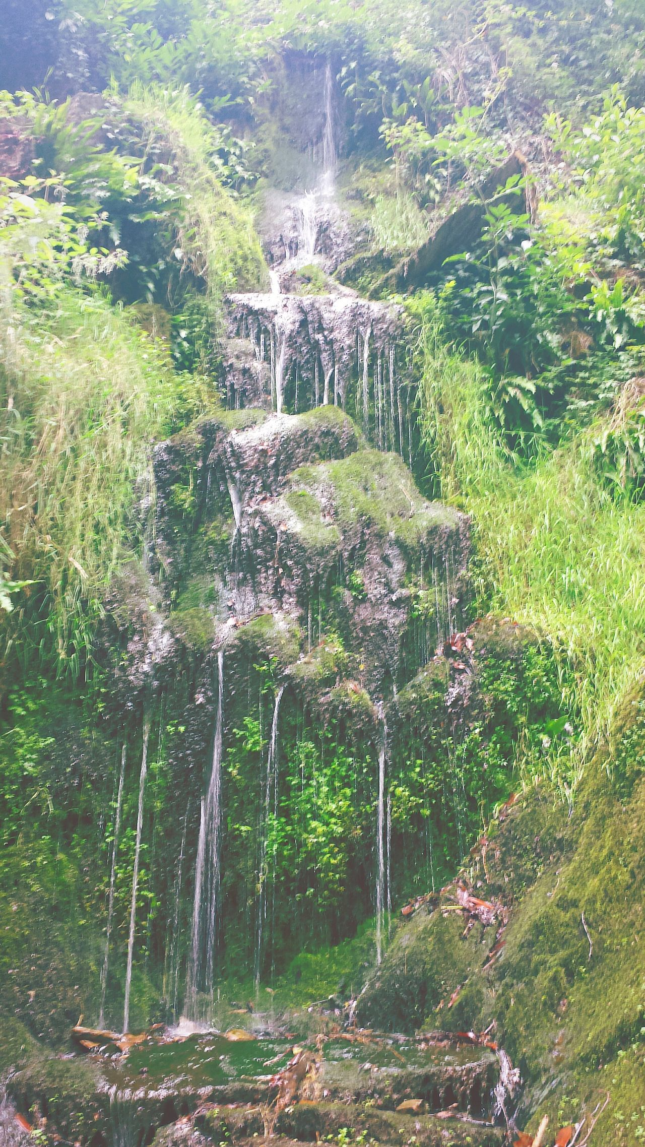 Nature On Your Doorstep Secret Garden Somerset England English Countryside Hestercombe House Beautiful Waterfall Outdoors Countryside