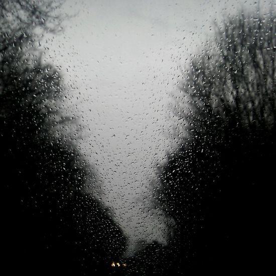 Lights Drivebyphotography Street Raindrops Frommycar Car Streethome Street Art