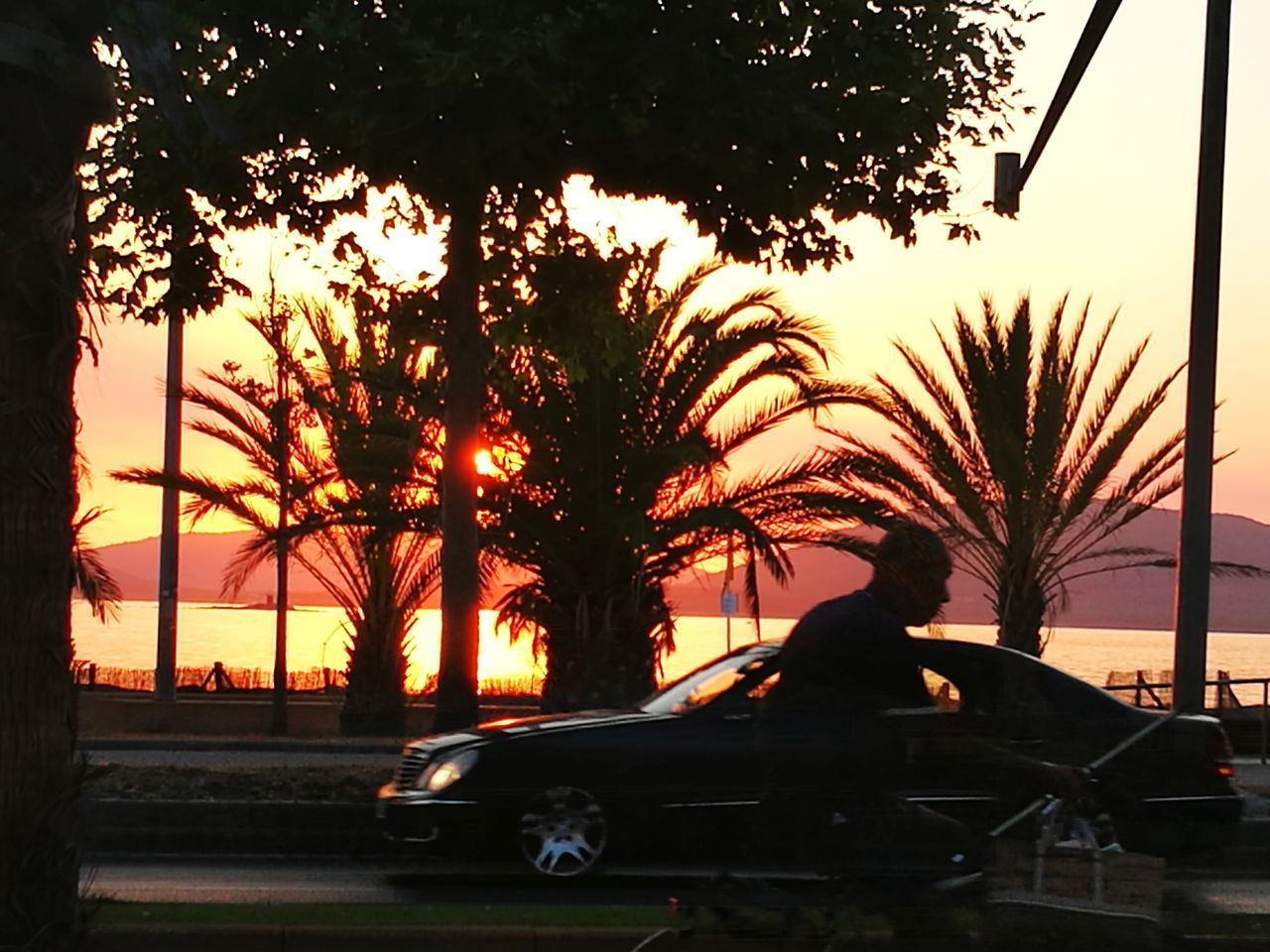 sunset, car, tree, palm tree, transportation, silhouette, outdoors, land vehicle, real people, one person, nature, sky, beauty in nature, day, people