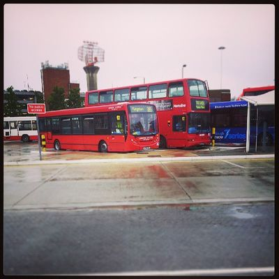 Buses on the stand