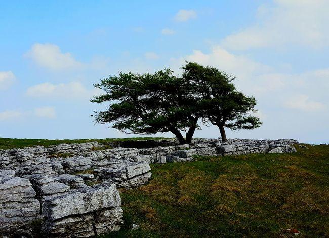 Great Orton Scar Limestone Pavement Landscape Cumbria Yorkshire Moors Wuthering Heights Bronte Sisters Moorland Lonliest Place Moors Bleak Beauty Wilderness