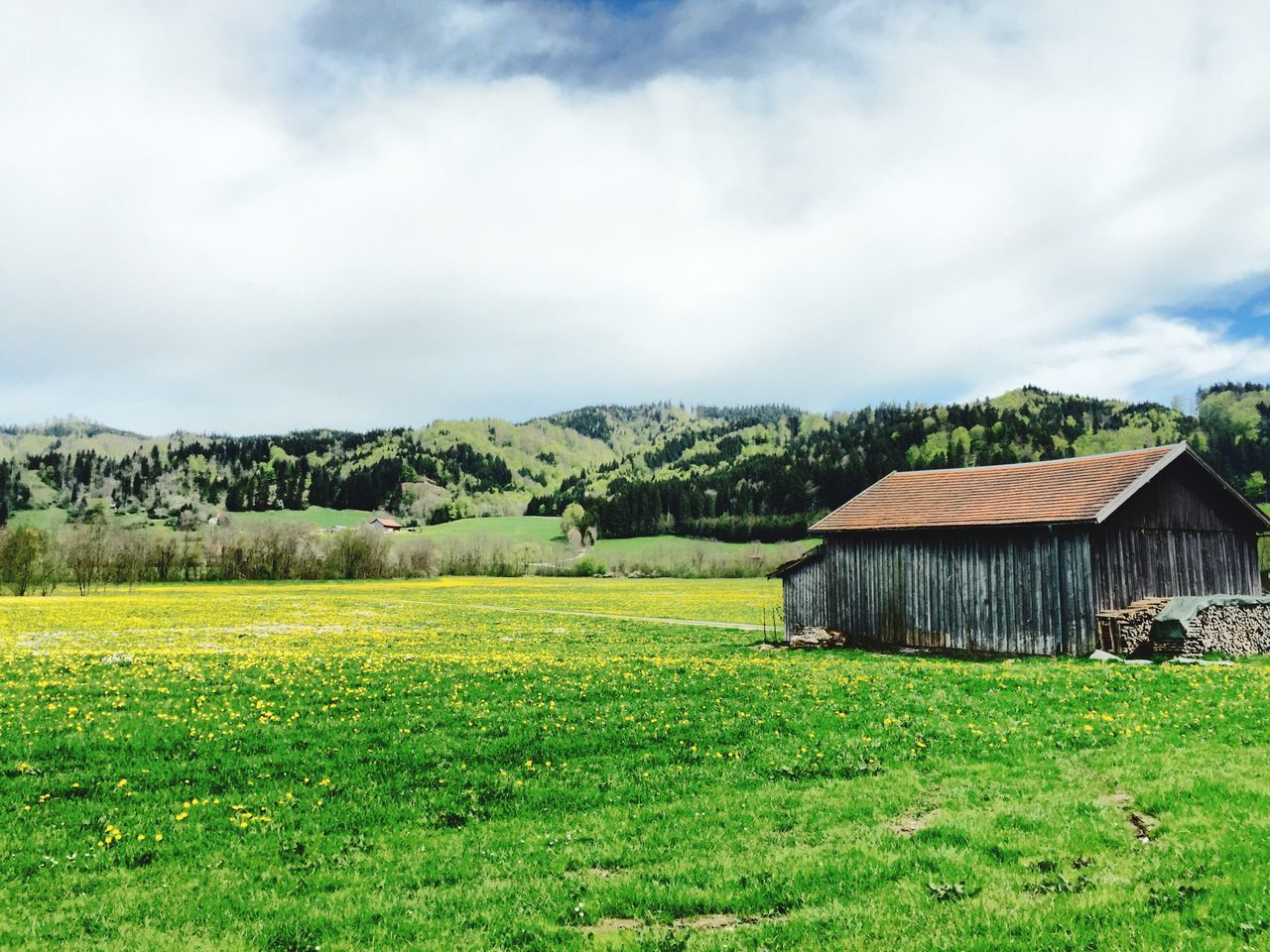 Die Adelegg von Großholzleute aus gesehen. Barns Spring Landscape