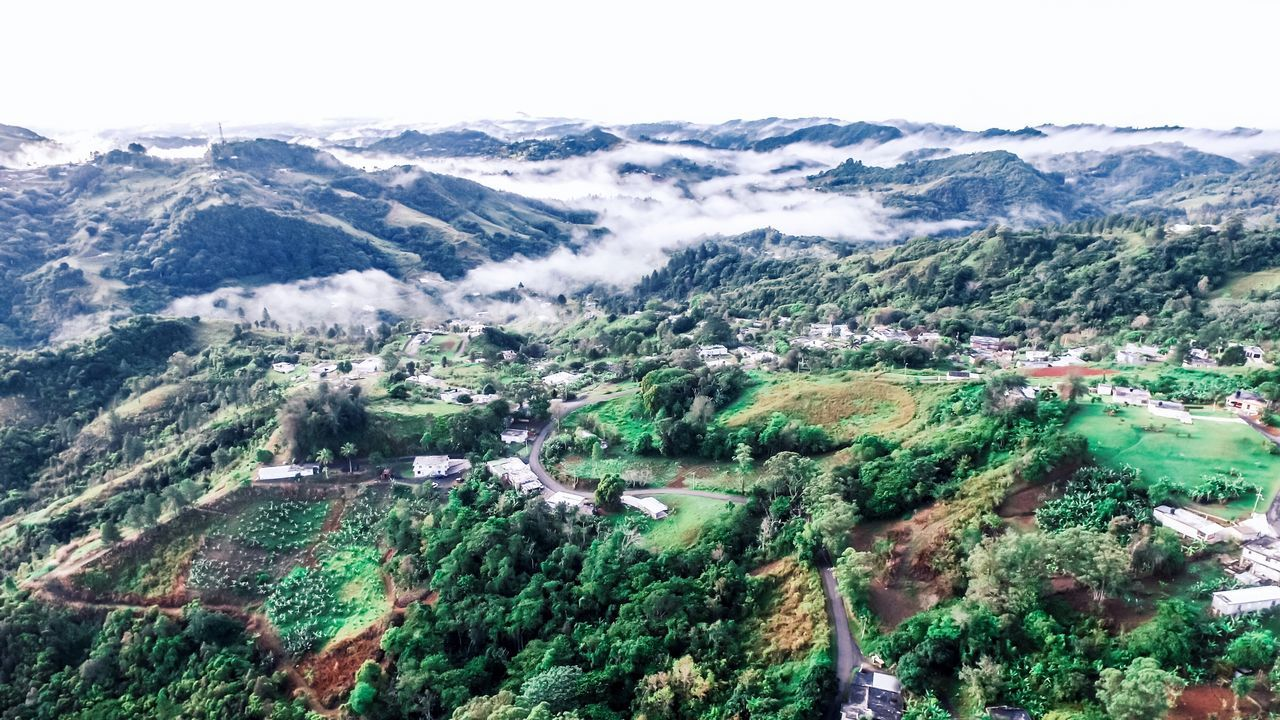 Puerto Rico Mountain Nature Scenics Beauty In Nature High Angle View Tranquil Scene Mountain Range Tranquility Landscape Outdoors No People Green Color Tree Day Cold Temperature Aerial View Winter Sky