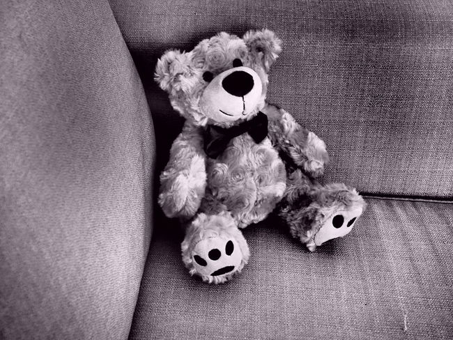Close-up High Angle View Home Home Interior Home Sweet Home Indoors  Man Made Object Messy Misfortune Monochrome Photography No People Stuffed Toy Teddy Teddy Bear Teddybear Teddylove Toy