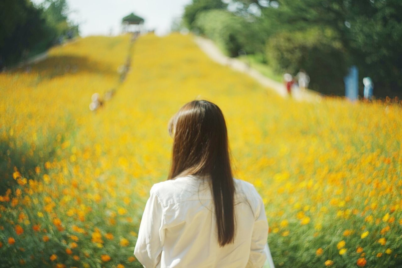 Beautiful stock photos of seoul, Beauty In Nature, Casual Clothing, Day, Field